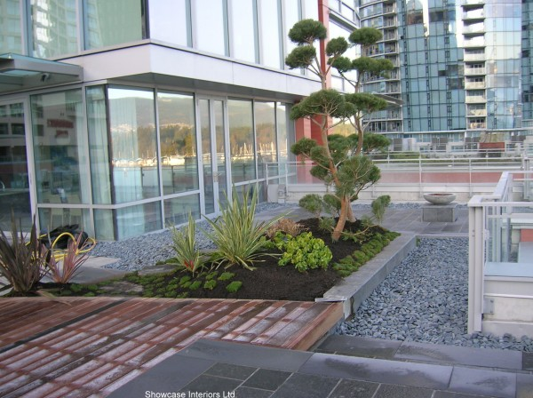 Coal Harbour Deck-002